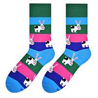 "Мужские носки More 079 ""кролик 192"""