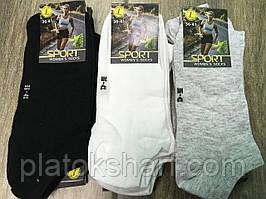 Шкарпетки жіночі Спорт