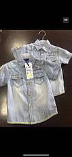 Джинсові сорочки на хлопчика оптом, S&D, 1-5 рр, фото 3