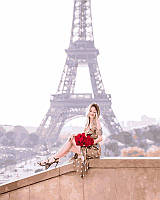 Картина по номерам Розы на фоне Парижа, 40x50 см, подарочная упаковка