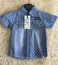 Рубашка для мальчика оптом, размеры 1-5 лет, S&D, арт. KK-586