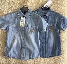 Рубашка для мальчика оптом, размеры 4-12 лет, S&D, арт. KK-587