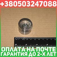 ⭐⭐⭐⭐⭐ Гидротолкатель VAG EX 1,8 20V (производство  Ina) АУДИ,СИАТ,ШКОДА,ФОЛЬКСВАГЕН,100,A3,A4,A6,A8,AЛЛРОAД,AЛХAМБРA,БОРA,В8,ГОЛЬФ  4,ГОЛЬФ  5,