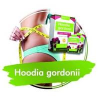 Hoodia Gordonii (Худия Гордони) - средство для похудения, фото 1