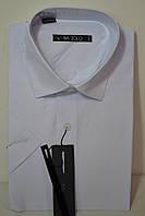 Белая приталенная тенниска BAZZOLO (размеры S.M.L.XXXL. + под заказ )