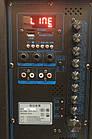 Колонка Temeisheng QX-1221 аккумуляторная,USB, Bluetooth, 2 микрофона, фото 2