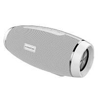 Портативная Bluetooth колонка HOPESTAR H27 (Белая) D1001