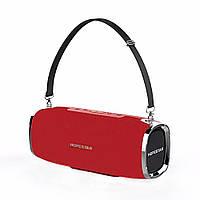 Портативная Bluetooth колонка HOPESTAR A6 (Красная) D1001