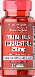 Tribulus Terrestris 250 mg90 Capsules