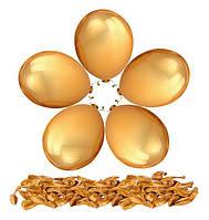 """Воздушные шары 100 шт латексные, цвет металлик золото 10""""(26 см)Италия"""