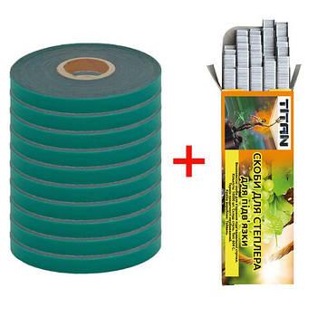 Набор (для степлера, тапенера): лента для подвязки 30 м 110 мкм 10 шт + скобы 10000 шт