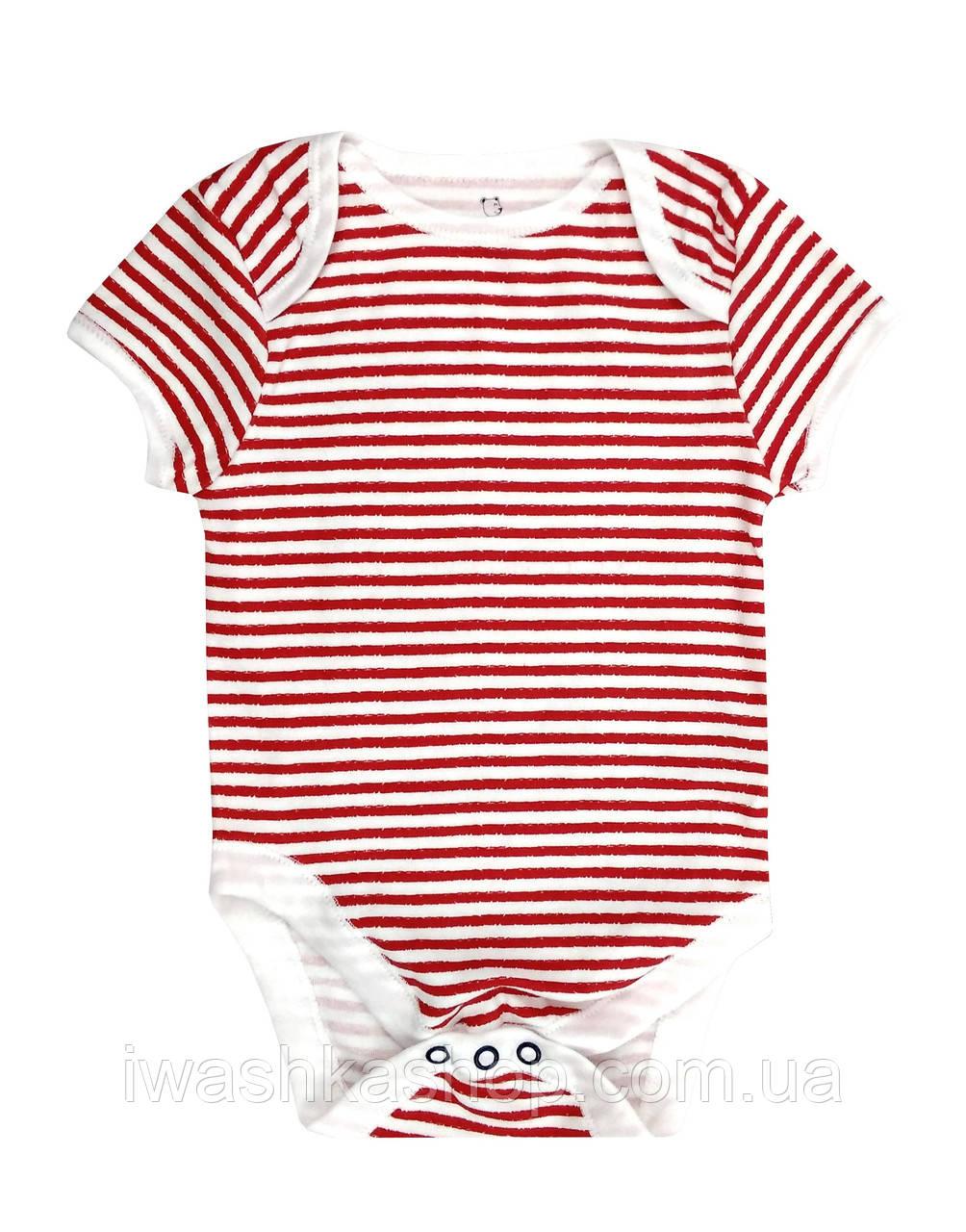 Боді з коротким рукавом в смужку для хлопчика 6 - 9 місяців, р. 74, Early days by Primark