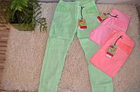 Котоновые брюки для девочек оптом 152-170 см