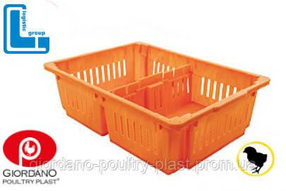 Ящик для перевозки суточных цыплят 690х485х180 мм