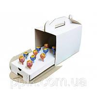 Коробка для кейк-попсов 3 шт