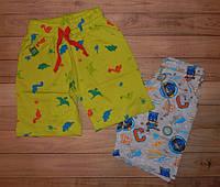 Детские шорты для мальчика Дракоша. Турция. 2-9 лет.