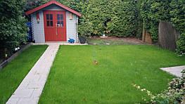 Сухой газон (биомат)