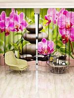 Фотоштора Walldeco Рожева орхідея (14487_1_3)