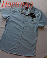 Рубашка-шведка CEGISA голубая