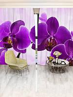 Фотошторы WallDeco Рожеві орхідеї (18475_1_ 3)
