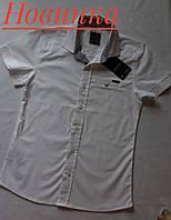 Рубашка-шведка Gesica белая