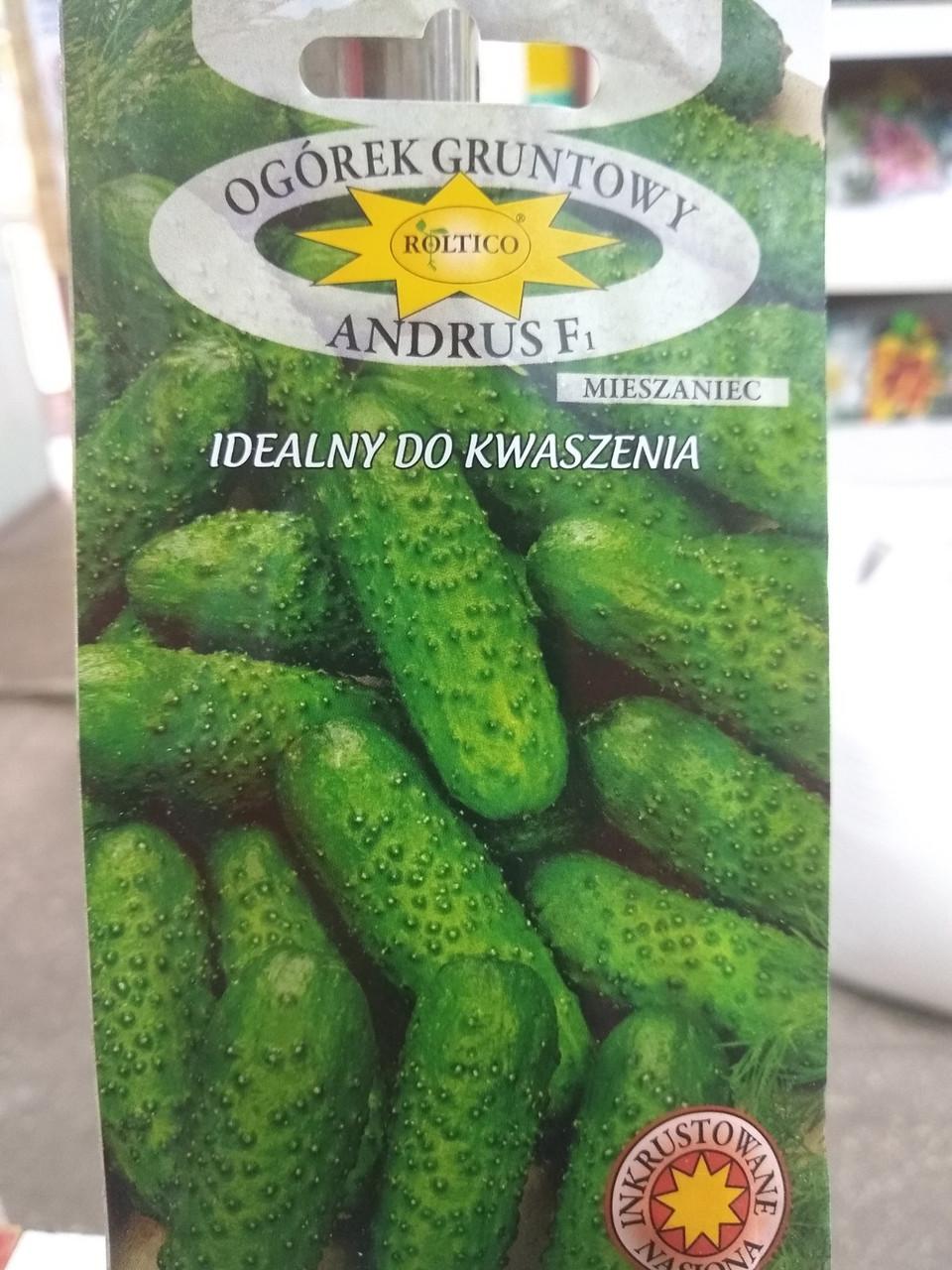 Огурец семена Андрус F1 корнишон, 180 сем, Польша оригинал