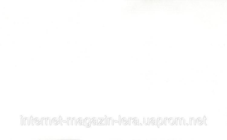 ДСП Біла - Еліт