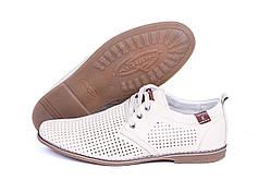 Мужские летние туфли, натур кожа, перфорация , KungFu, 3 цвета