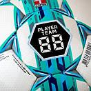 М'яч футбольний Select Campo Pro №5, фото 2