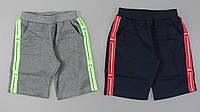 Трикотажні шорти для хлопчиків Grace, [122], фото 1