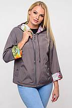 Женская ветровка  Дафни, 44-62р, фото 3