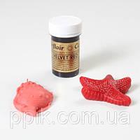 Краска паста Sugarflair Красный вельвет