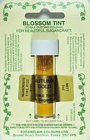 Краска сухая Sugarflair Античное золото