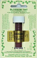 Краска сухая Sugarflair Баклажан