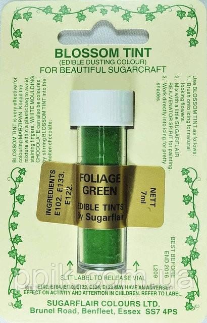 Краска сухая Sugarflair Зеленая листва