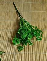 Куст декоративный салатовый