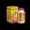 Чаванпраш Гурукул 55 рослин Мультивітамінний-мінеральний комплекс