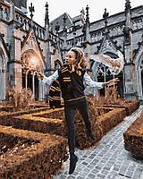 Картина по номерам для взрослых и детей Волшебник Люмус 40 х 50 см, Без Коробки