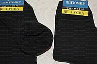 Носки мужские теплые. р.43-45. Махровые