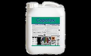 Capatox 1л - раствор биоцида, препятствующий  возникновению водорослей, грибков и плесени.