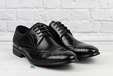 Туфлі чоловічі броги - Тренд 2019р! 40-45р, фото 3