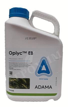Фунгицид Ориус 25% в.е. ADAMA - 5 л., фото 2