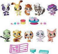 Игровой набор 5 зверюшек и аксессуары Littlest Pet Shop Hasbro B0282