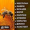 Топ 9 інсектицидів безпечних для бджіл