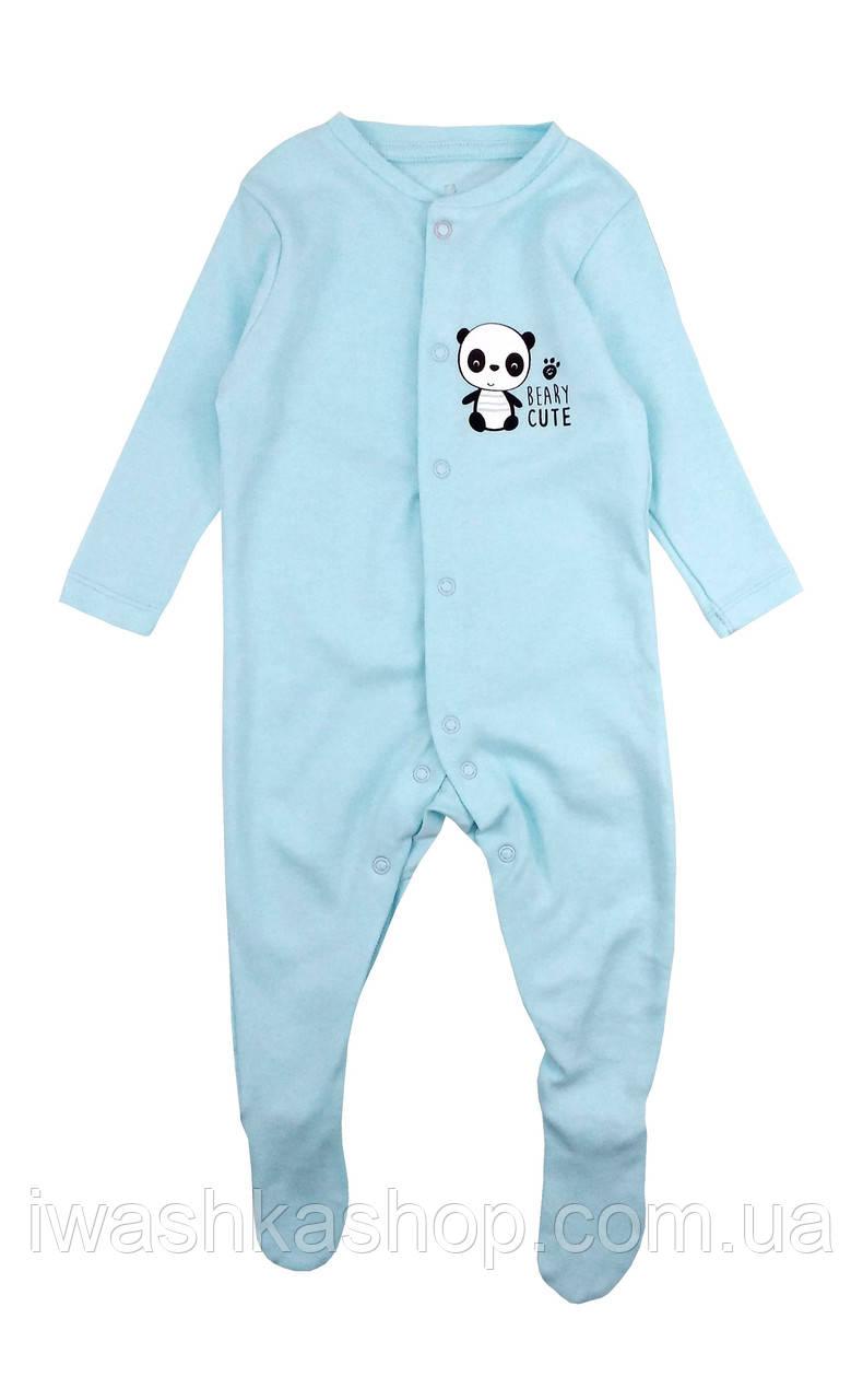 Бирюзовый хлопковый человечек, пижама слип с пандой на мальчика 3 - 6 месяцев, р. 68, Early days by Primark