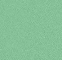 Кожзам для медицинской мебели (арт. MED-62 / 6156) цвет салатовый