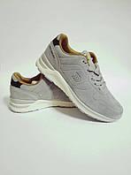 Женские кроссовки Restime из натуральнй замши 36-41 р., подростковые, легкие и удобные, фото 1