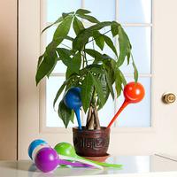 Шар для полива растений Флаура