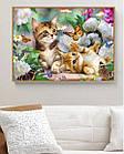 Алмазна вишивка, котики в кольорах 30х20 см, квадратні стрази, повна викладка, фото 2