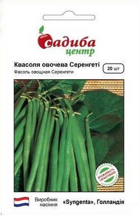 Семена фасоли Серенгети 20 шт, Syngenta, фото 2
